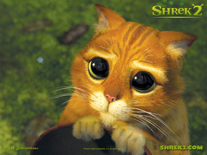 shrek cat